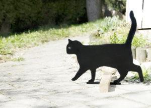Katzenwarnschild